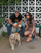 A new arrival!…congratulations to George and Amal Clooney, for adopting a cute Basset Hound called Millie, from the San Gabriel Valley Humane Society in San Gabriel, California…and of course Amal did it in style ~ celebrity style ~ chic looks ~ stylish celebrities ~ couples