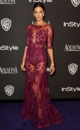 Model Alessandra Ambrosio wore this stunning sheer purple floral gown to the 2015 Golden Globes after-party & although it's rather risque, I absolutely love it! flower embroidered gowns / celebrity fashion