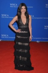 Priyanka Chopra in Zuhair Murad at the White House Correspondents Dinner, April 2016 ~ red carpet gowns ~ Indian actresses ~ glamour