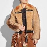COACH 1941 Pieced Shearling Bomber BAMBOO | tonal-brown fur jackets