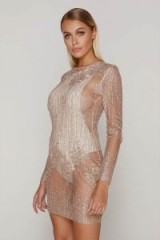 TAMMY HEMBROW ROSE GOLD GLITTER MESH BODYCON DRESS ~ sheer party dresses