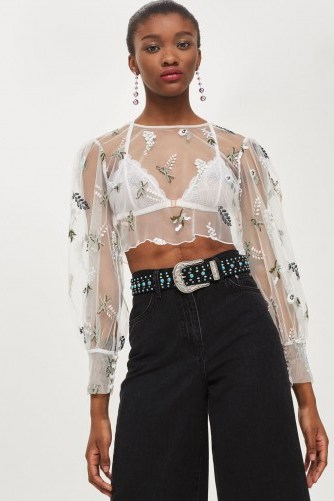 TOPSHOP Botanical Embroidered Mesh Top / sheer floral cropped blouses - flipped