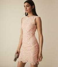 REISS ROXANDA LACE BODYCON DRESS BLUSH ~ pale-pink evening dresses ~ parties and cocktails