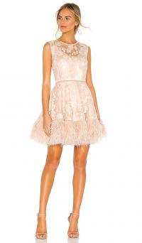 Bronx and Banco Viola Feather Dress in Nude | luxe party dresses | sleeveless feathered fit and flare