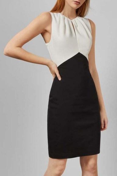 Ted Baker Zamelid Fitted Sleeveless Dress - flipped