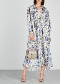 ZIMMERMANN Verity floral-print silk maxi dress ~ blue and white bird prints