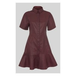 WHISTLES Leather Mini Dress in Burgundy