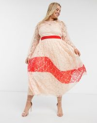 Little Mistress Plus contrast lace pleated midi dress | plus-size occasion dresses