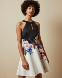 TED BAKER TILDDA Jamboree skater dress / sleeveless fit and flare dresses