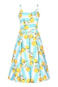 THE PRETTY DRESS COMPANY PRISCILLA LEMON STRIPE MIDI DRESS / vintage style summer dresses / lemon print fit and flare