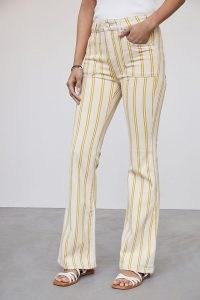 Pilcro The Icon Flare Jeans Yellow Motif | striped denim