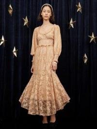 sister jane Crescent Lace Maxi Dress Pale Blush / romantic semi sheer fashion / vintage style floral lace dresses